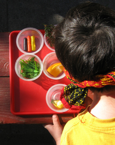 Kindergarten Science Activities: Play the Senses Guessing Game