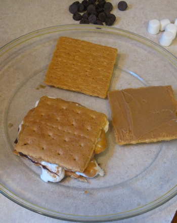 Third Grade Recipes Activities: Gourmet S'mores