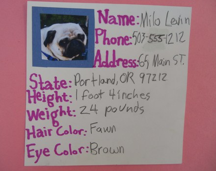 Third Grade Reading & Writing Activities: Pet ID