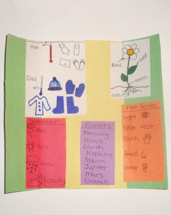 First Grade Arts & Crafts Activities: Science Foldable