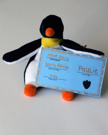 First Grade Reading & Writing Activities: Stuffed Animal Birth Certificate