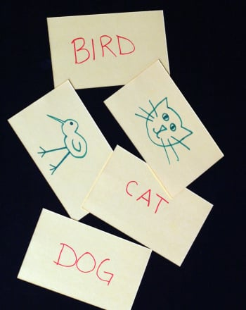 Kindergarten Reading & Writing Activities: Word Recognition