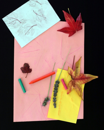 First Grade Science Activities: Make Your Own Stationery