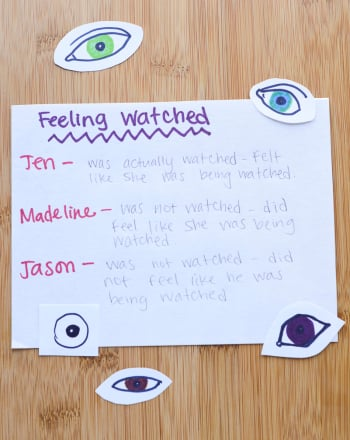 Fifth Grade Social Studies Science projects: The Psychology of Feeling Watched