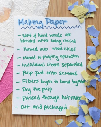 Fourth Grade Science Science projects: Paper Making: The Next Level