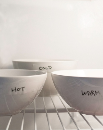 Third Grade Science Science projects: Does Hot Water Freeze Faster Than Cold Water?