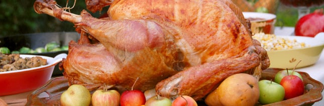Thanksgiving Myths - Debunked!