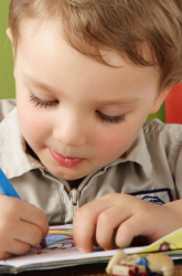 What to Expect in Kindergarten