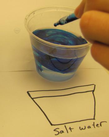 Food Coloring in Water | Activity | Education.com