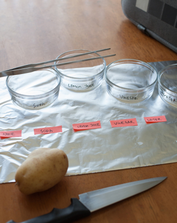 Fourth Grade Science Science Projects: Why Do Apples Turn Brown?