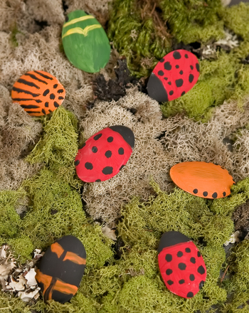 Second Grade Arts & crafts Activities: Create Beetle Mania
