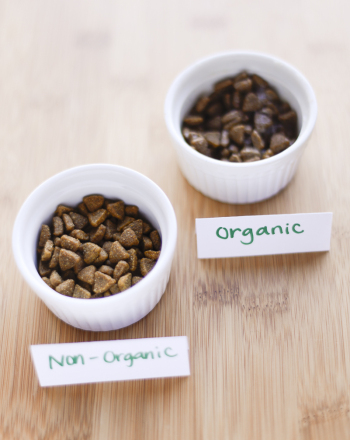 Middle School Science Science Projects: Go Organic or Not?