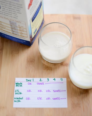 Middle School Science Science Projects: Milk Experiment