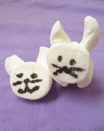 Second Grade Holidays & Seasons Activities: Marshmallow Bunny