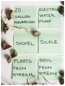 In this science fair project, students examine how the flow rate in a stream affects the growth of aquatic plants.