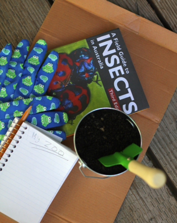Fifth Grade Science Science Projects: Soil Horizon