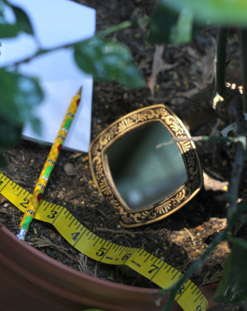 Fourth Grade Science Science projects: Using Mirrors in the Garden: Measuring Light Reflection