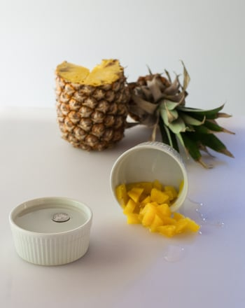 Third Grade Science Science projects: Pineapple Enzyme
