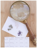 Check out this cool science fair project on identifying rocks and minerals for kids.
