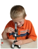 Learn what your child should be able to do at the beginning and end of second grade science.
