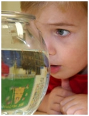 Preschoolers are actively engaged in scientific learning. Try a few of these fun and simple ways to engage your child in science learning.