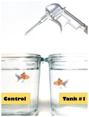 Observe how acidity affects saltwater. Fill fish tanks with saltwater. Put the CO2 injectors inside and monitor condition of fish