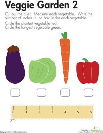 Kindergarten Measurement Worksheets & Free Printables | Education.com