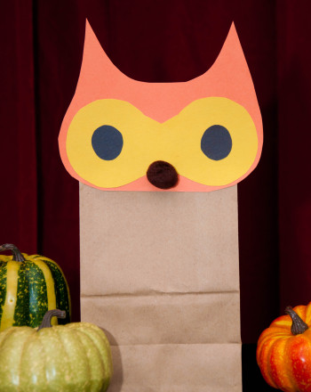 Second Grade Seasons Activities: Owl Paper Bag Craft