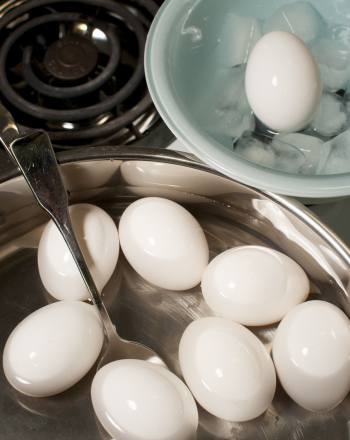 Middle School Science Science Projects: The Perfect Soft-Boiled Egg