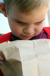 The Brown Bag Never Looked So Good: Sprucing Up Your Child's Lunch