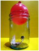 In this air pressure science experiment with a balloon and a jar, children will use heat to create a partial vacuum and suck a balloon into a jar.