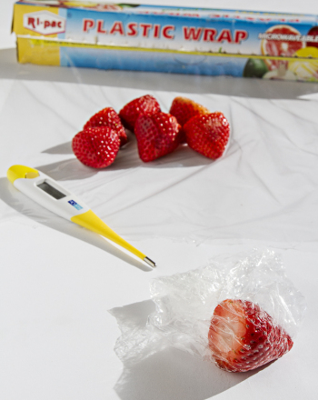 Middle School Science Science Projects: Thermotherapy and Strawberries