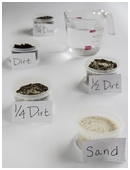 This free science fair project explores the 'dirty' relationship between the presence of organic material in soil and water absorbency.