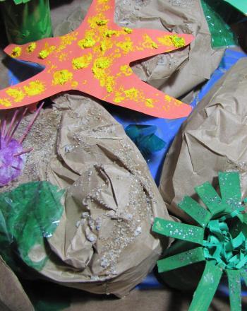 Second Grade Science Activities: Tide Pool Animals