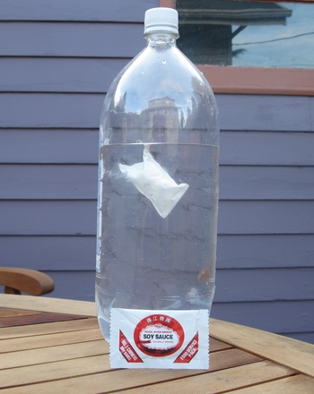 Fifth Grade Science Activities: How to Make a Cartesian Diver