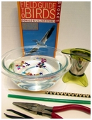 This science fair project idea identifies and understands adaptations in birds.