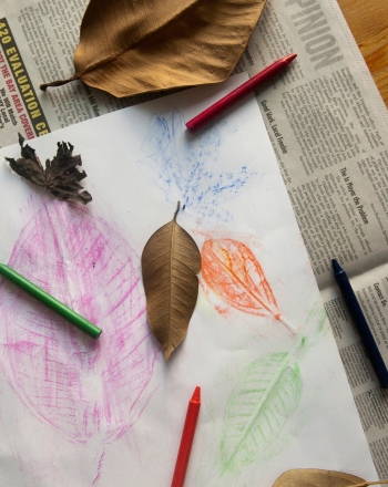 Kindergarten Science Science projects: Leaf Rubbings: Shapes and Patterns