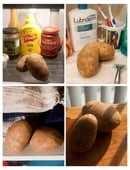 Will potatoes spud or sprout faster in dry, dark, or cold conditions? Find out in this science fair project idea!