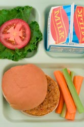 Childhood Obesity and Nutrition: Study Recommends New School Lunch Guidelines