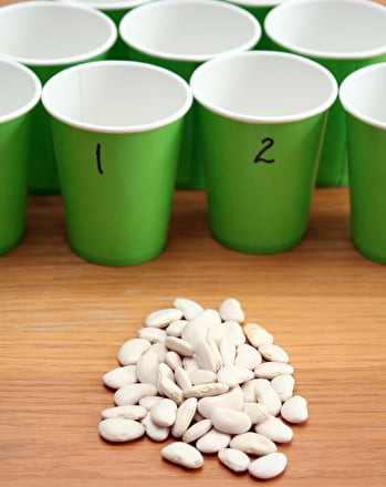 Kindergarten Math Activities: Counting Cups