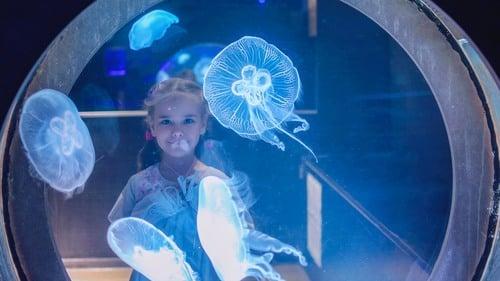 Kindergarten Arts & crafts Activities: Make a Hanging Jellyfish