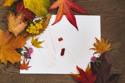 Preschool Seasons Activities: How to Make a Sketchbook