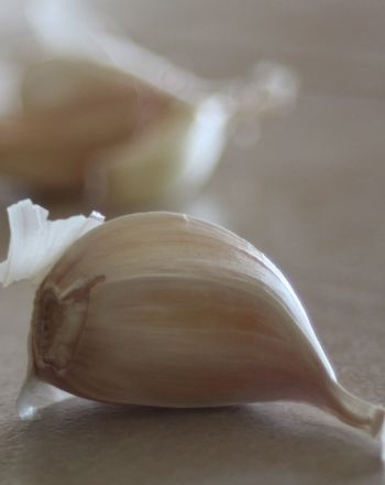 Middle School Science Science Projects: Properties of Garlic