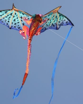 High School Science Science Projects: The Best Day to Fly a Kite