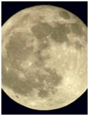 The objective of this free science fair project is to examine the way in which the phases of the moon affect circadian patterns in mammals.