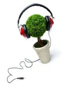 The project investigates the affect music has on plant growth while experimenting with rock, classical and no music.
