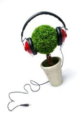Fourth Grade Science Science Projects: Music and Plants