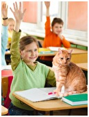 New findings in feline and youth pedagogy provide evidence that co-learning between human students and domestic cats improves classroom performance.