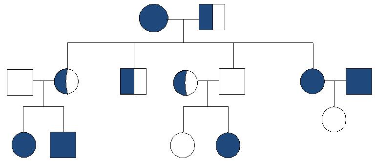 Is a Sweet Tooth Inherited Experiment – Pedigree Charts Worksheet
