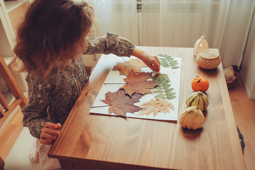 Kindergarten Math Activities: Autumn More or Less